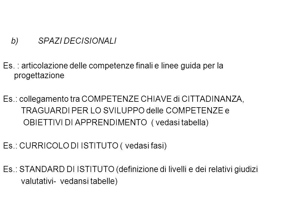 SPAZI DECISIONALI Es. : articolazione delle competenze finali e linee guida per la progettazione.