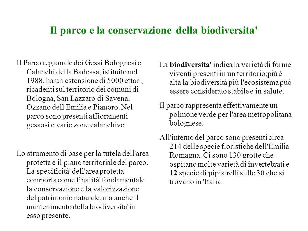 Il parco e la conservazione della biodiversita
