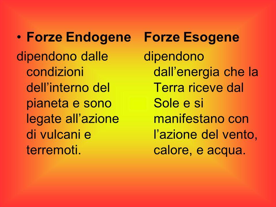 Forze Endogene Forze Esogene