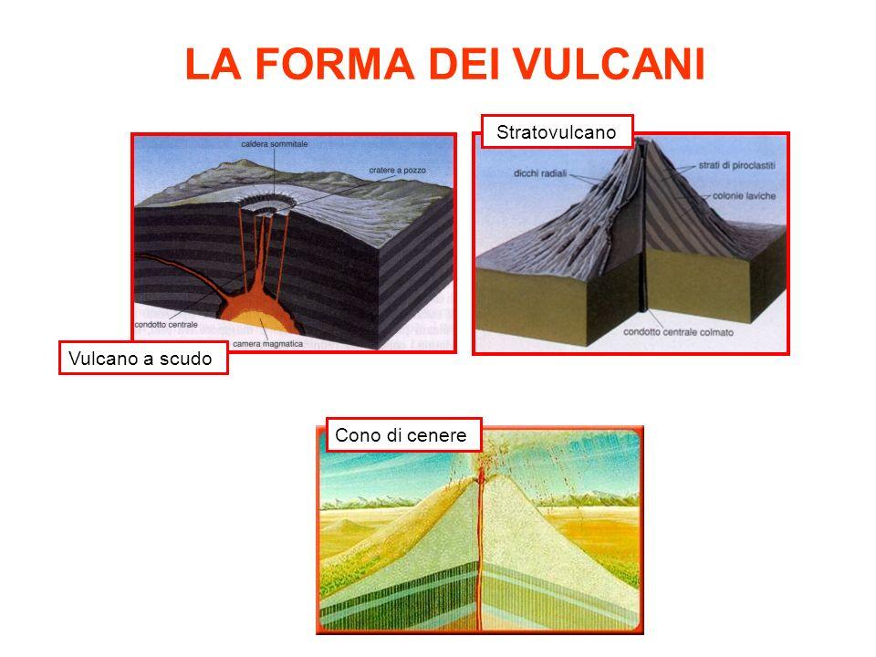 LA FORMA DEI VULCANI Stratovulcano Vulcano a scudo Cono di cenere