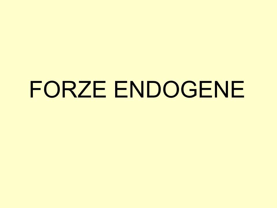 FORZE ENDOGENE