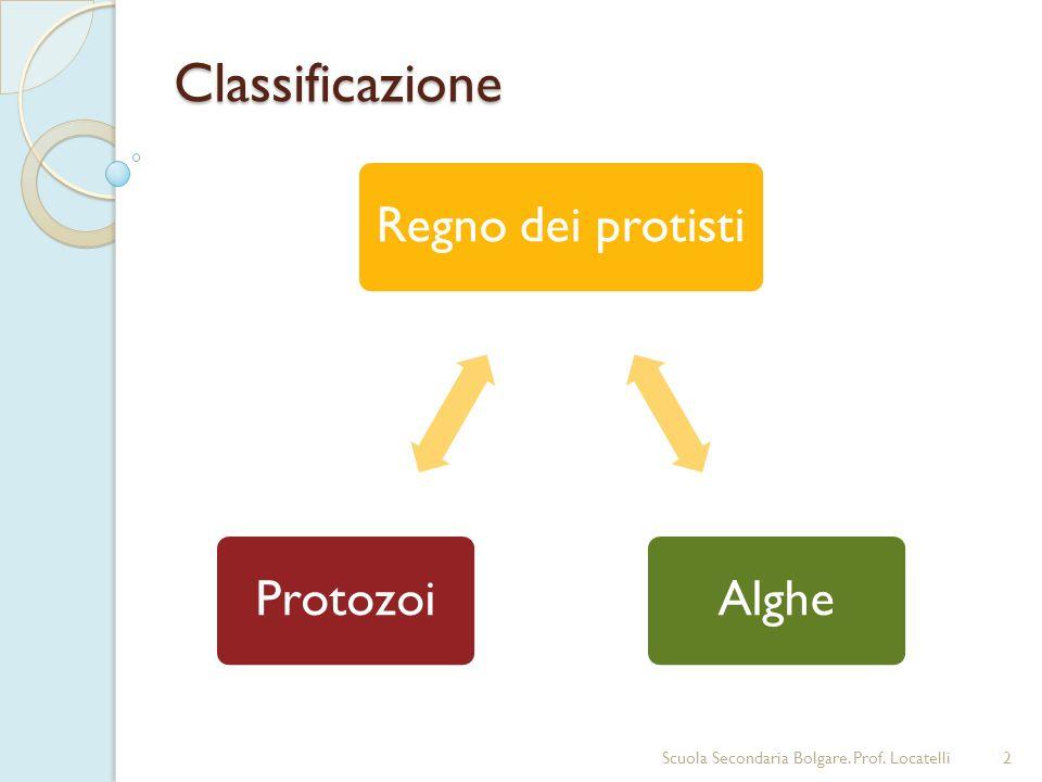 Classificazione Scuola Secondaria Bolgare. Prof. Locatelli