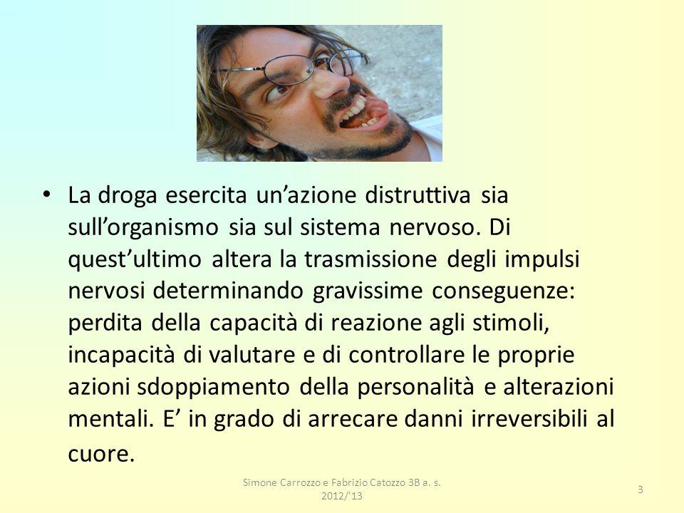 Simone Carrozzo e Fabrizio Catozzo 3B a. s. 2012/ 13