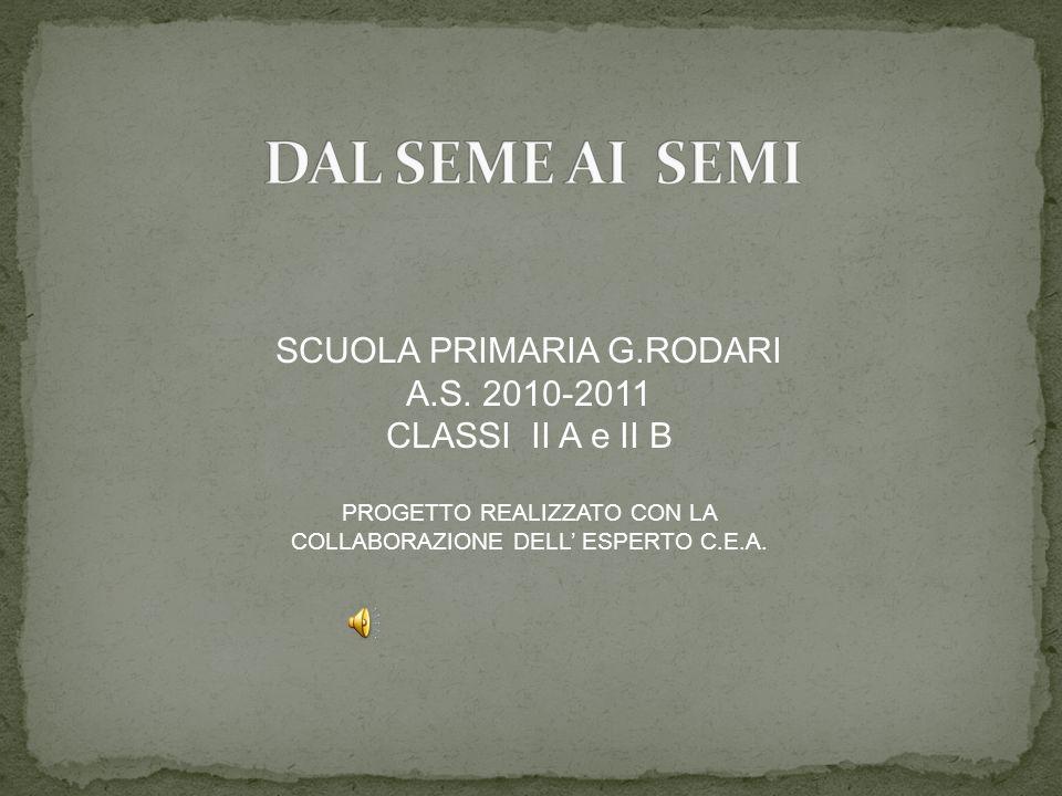 DAL SEME AI SEMI SCUOLA PRIMARIA G.RODARI A.S. 2010-2011
