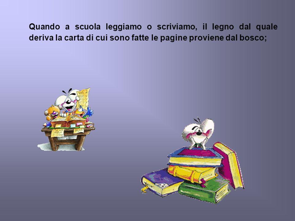 Quando a scuola leggiamo o scriviamo, il legno dal quale deriva la carta di cui sono fatte le pagine proviene dal bosco;