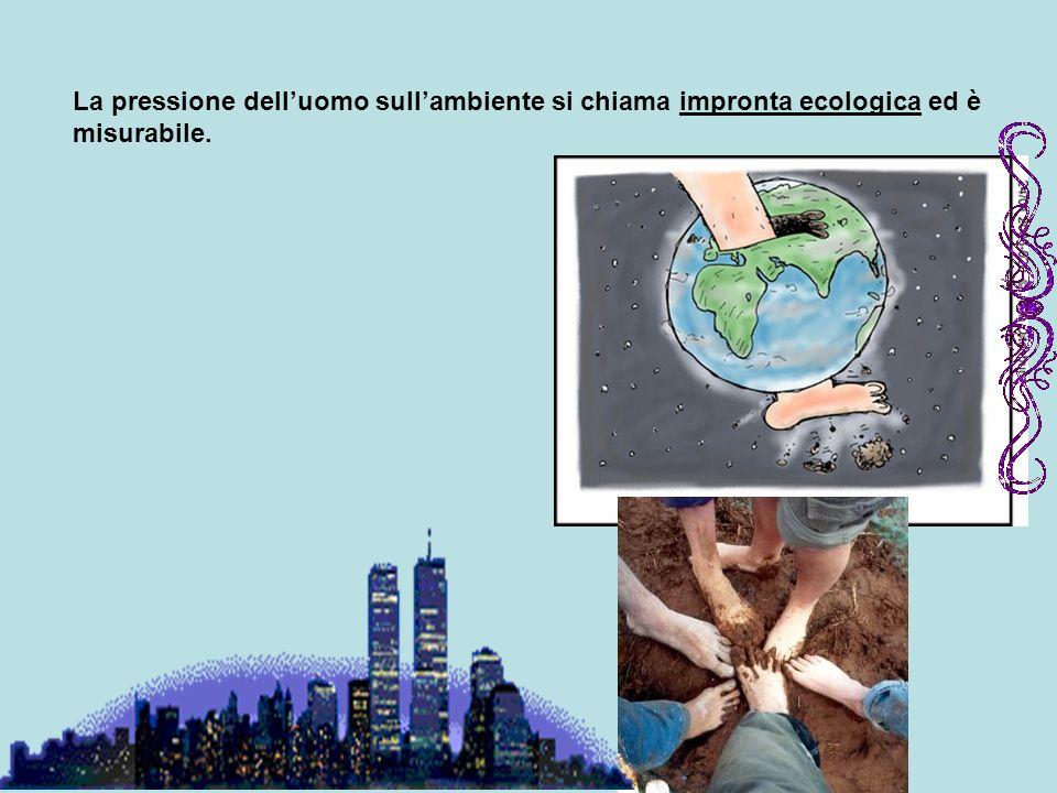 La pressione dell'uomo sull'ambiente si chiama impronta ecologica ed è misurabile.
