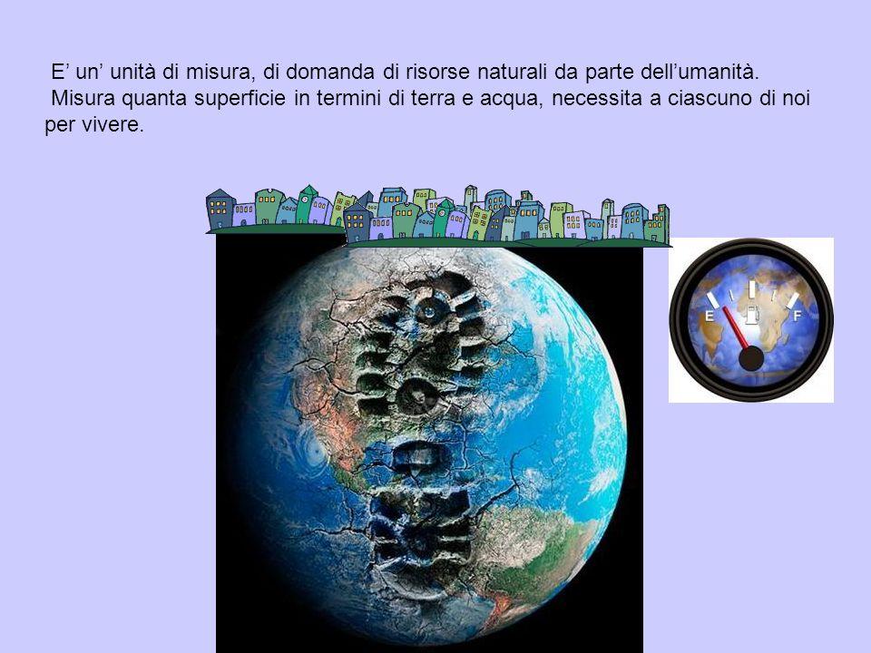 E' un' unità di misura, di domanda di risorse naturali da parte dell'umanità.