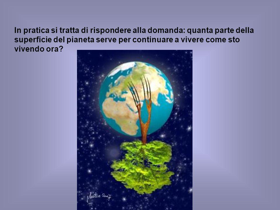 In pratica si tratta di rispondere alla domanda: quanta parte della superficie del pianeta serve per continuare a vivere come sto vivendo ora