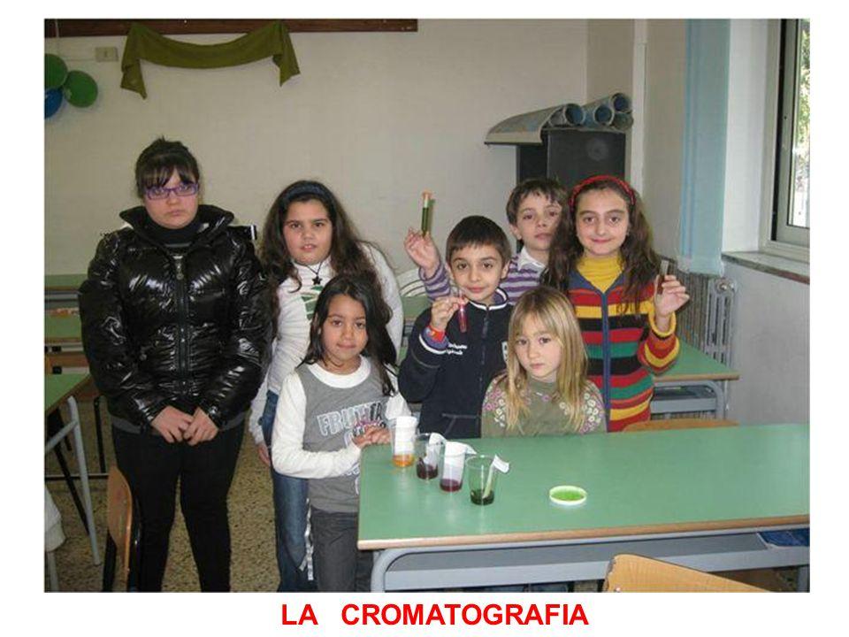 LA CROMATOGRAFIA