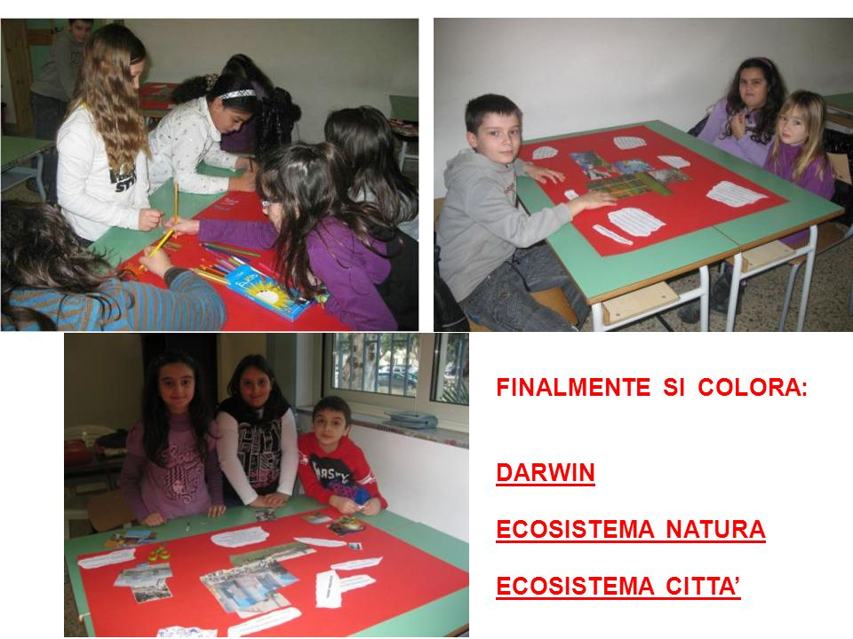 FINALMENTE SI COLORA: DARWIN ECOSISTEMA NATURA ECOSISTEMA CITTA'