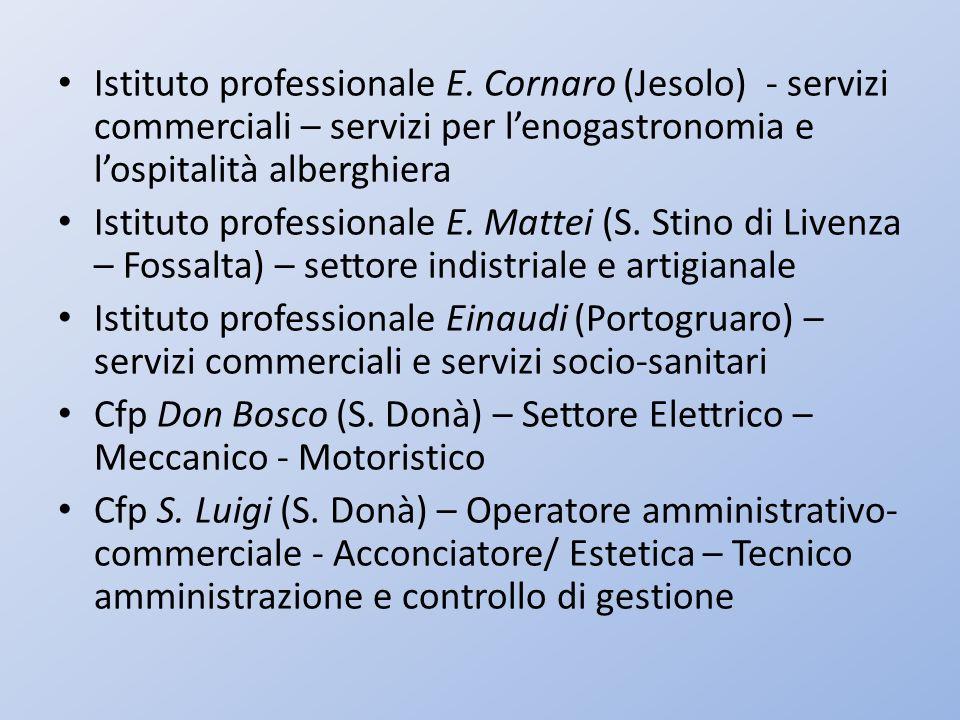 Istituto professionale E