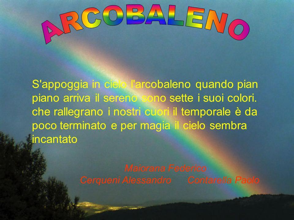 Cerqueni Alessandro Contarella Paolo
