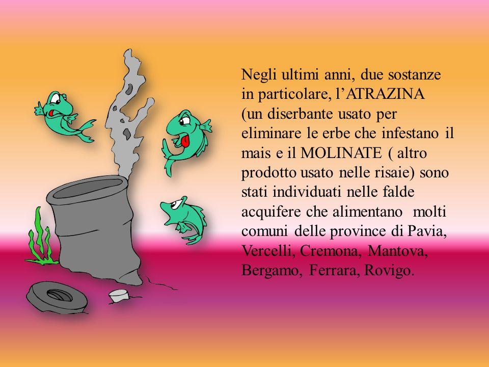 Negli ultimi anni, due sostanze in particolare, l'ATRAZINA (un diserbante usato per eliminare le erbe che infestano il mais e il MOLINATE ( altro prodotto usato nelle risaie) sono stati individuati nelle falde acquifere che alimentano molti comuni delle province di Pavia, Vercelli, Cremona, Mantova, Bergamo, Ferrara, Rovigo.