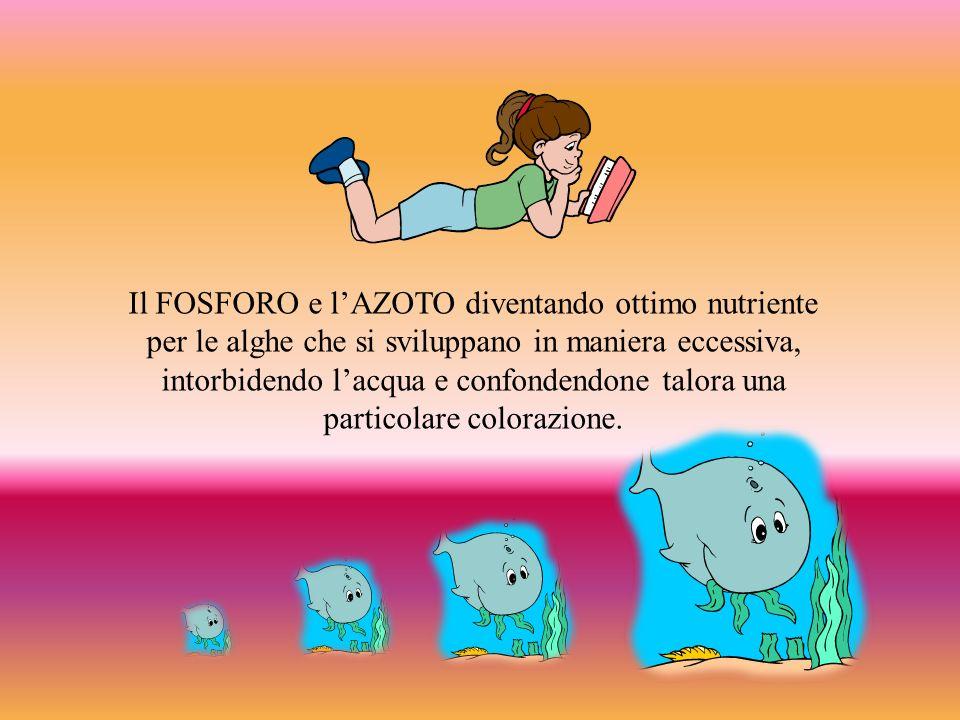 Il FOSFORO e l'AZOTO diventando ottimo nutriente per le alghe che si sviluppano in maniera eccessiva, intorbidendo l'acqua e confondendone talora una particolare colorazione.
