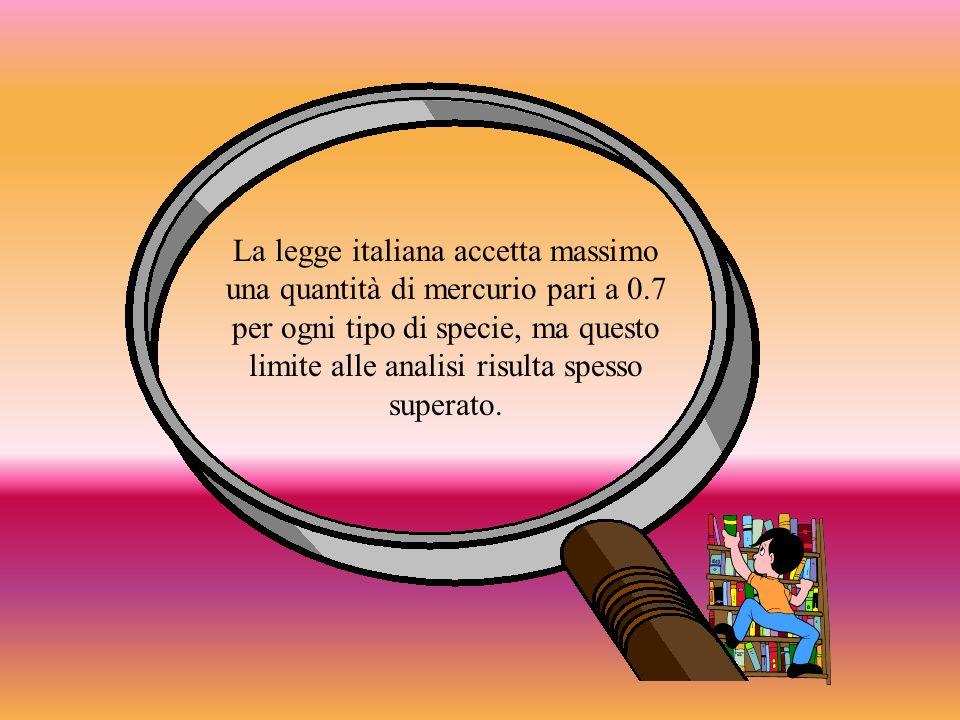 La legge italiana accetta massimo una quantità di mercurio pari a 0