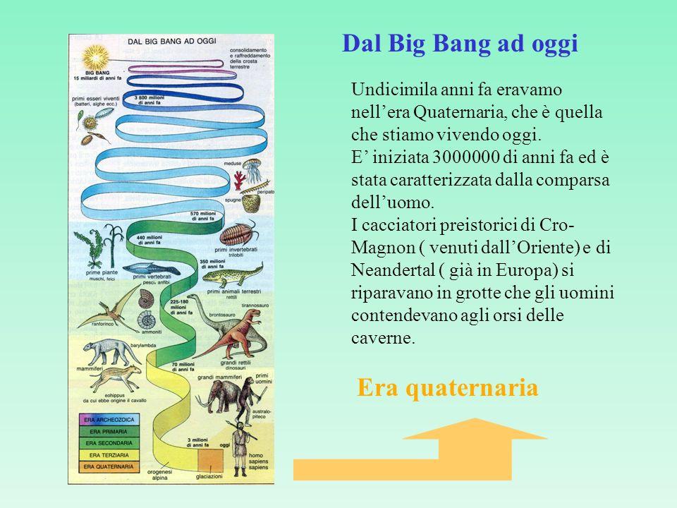 Dal Big Bang ad oggi Era quaternaria