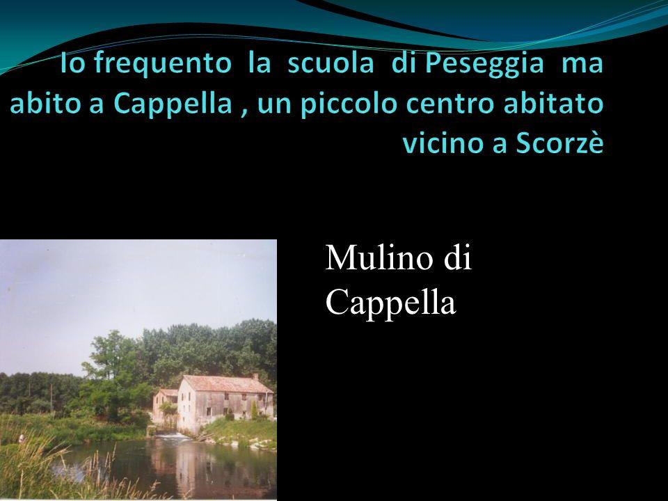Io frequento la scuola di Peseggia ma abito a Cappella , un piccolo centro abitato vicino a Scorzè
