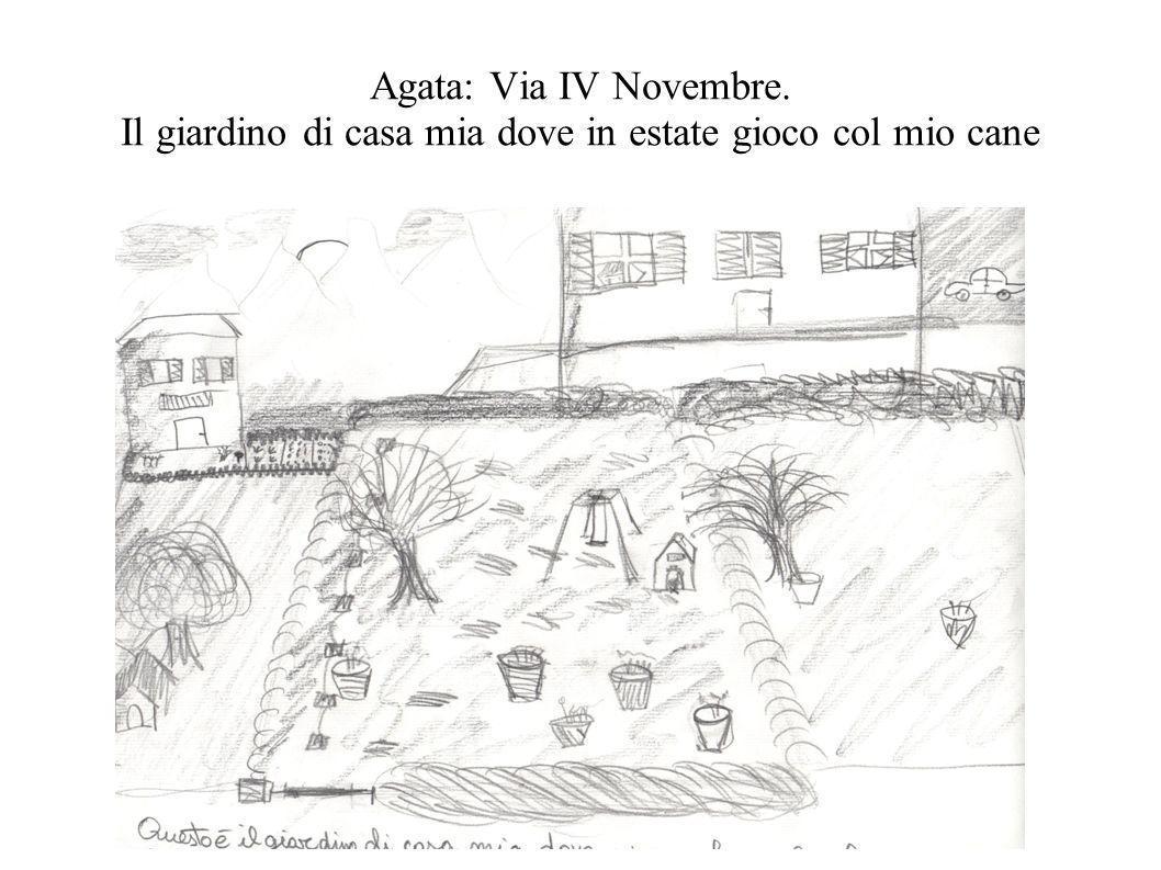 Agata: Via IV Novembre. Il giardino di casa mia dove in estate gioco col mio cane