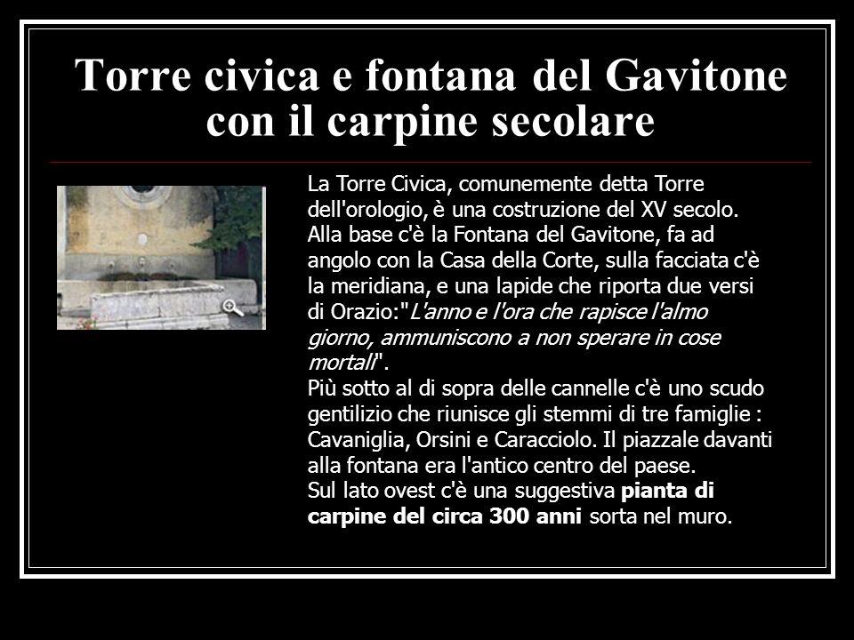 Torre civica e fontana del Gavitone con il carpine secolare