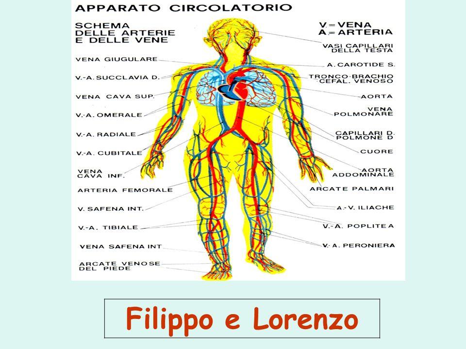 Filippo e Lorenzo