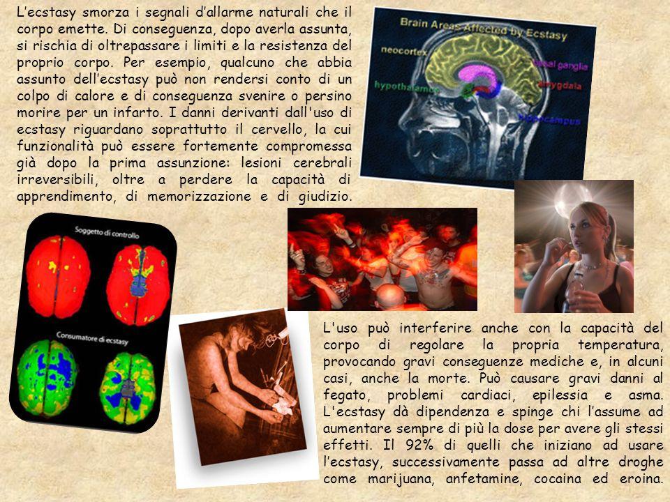L'ecstasy smorza i segnali d'allarme naturali che il corpo emette