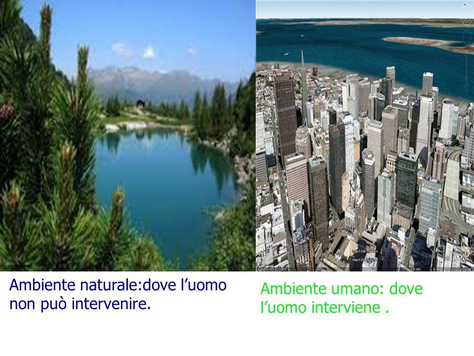 Ambiente naturale:dove l'uomo