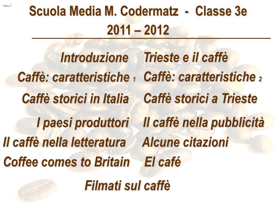 Scuola Media M. Codermatz - Classe 3e