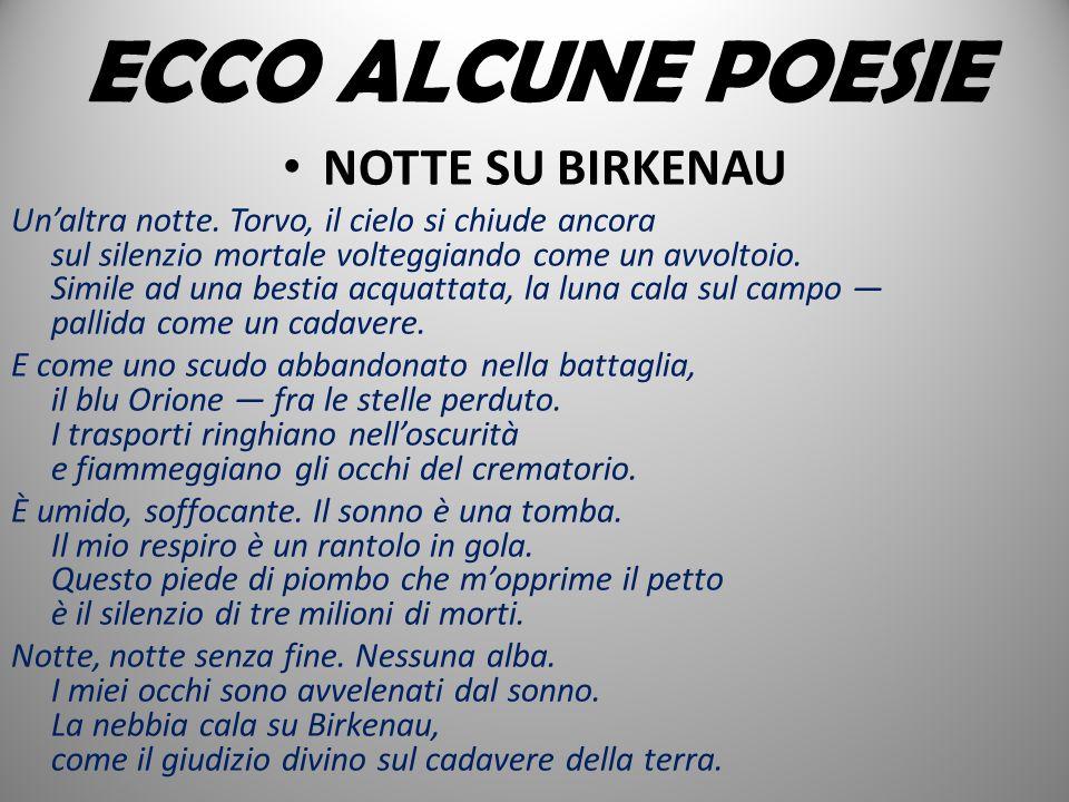 ECCO ALCUNE POESIE NOTTE SU BIRKENAU