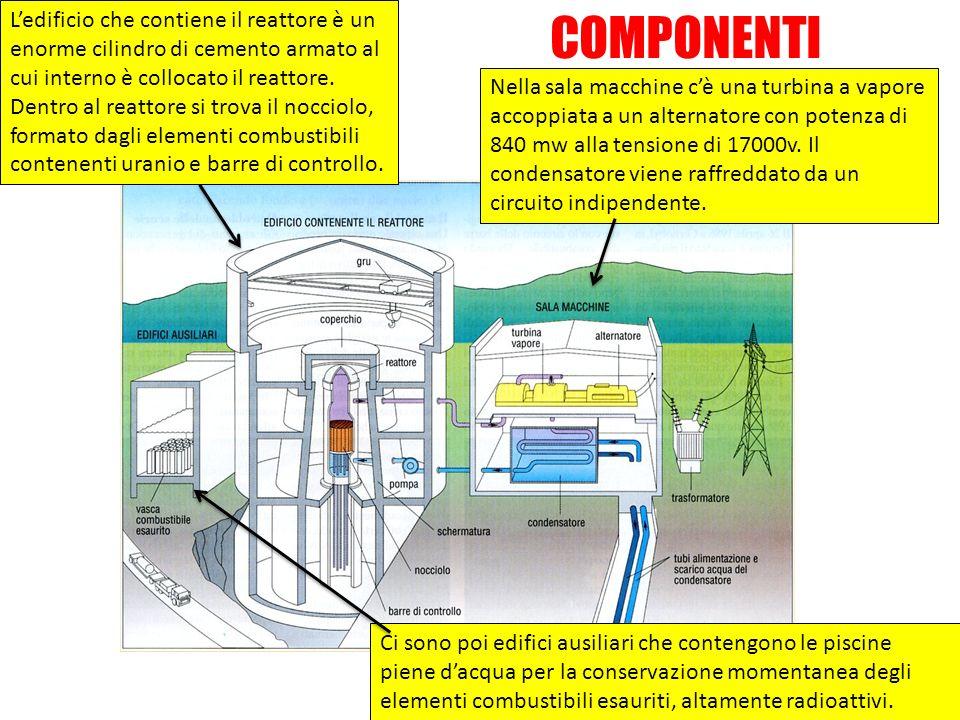L'edificio che contiene il reattore è un enorme cilindro di cemento armato al cui interno è collocato il reattore. Dentro al reattore si trova il nocciolo, formato dagli elementi combustibili contenenti uranio e barre di controllo.