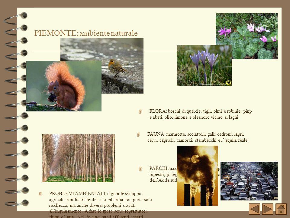 PIEMONTE: ambiente naturale