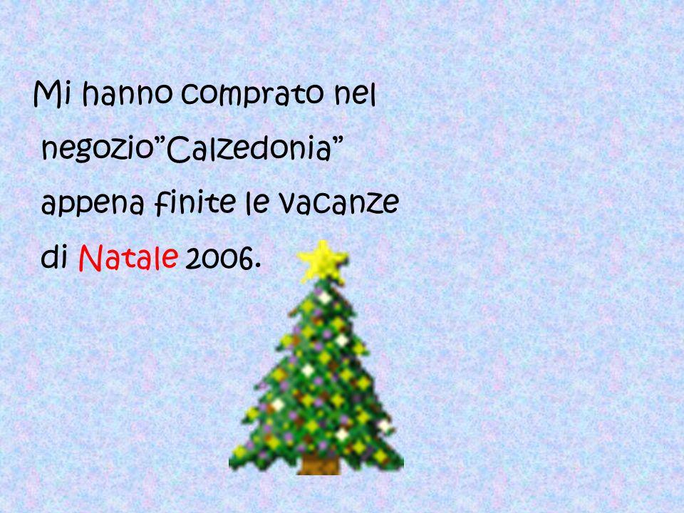 Mi hanno comprato nel negozio Calzedonia appena finite le vacanze di Natale 2006.