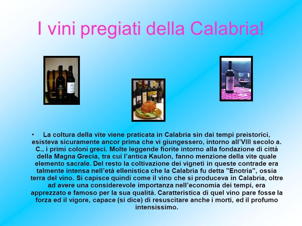I vini pregiati della Calabria!