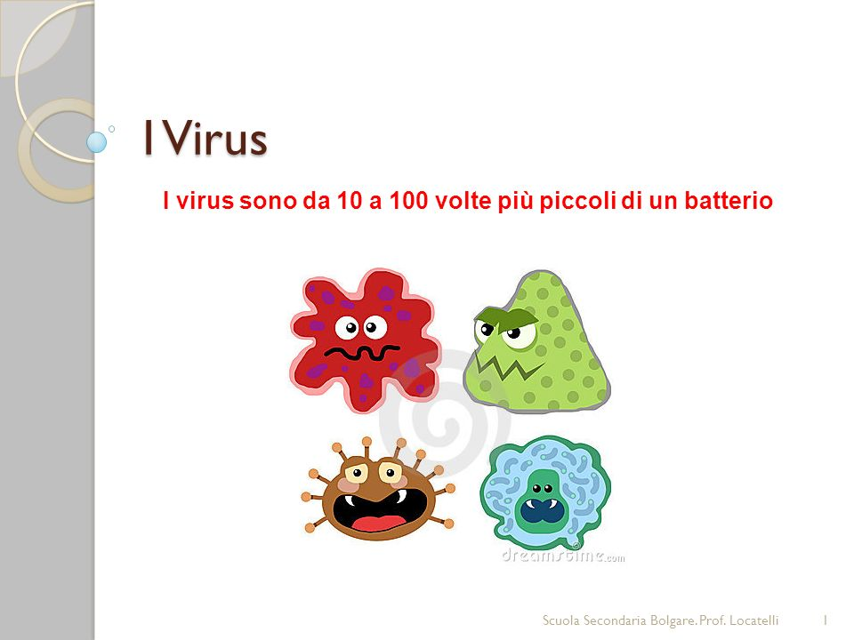 I virus sono da 10 a 100 volte più piccoli di un batterio