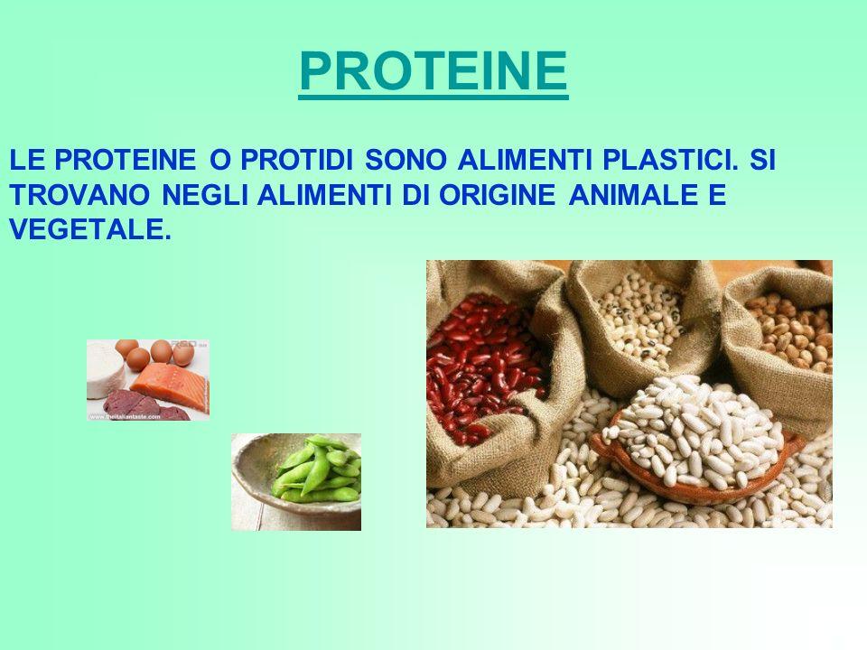 PROTEINE LE PROTEINE O PROTIDI SONO ALIMENTI PLASTICI.