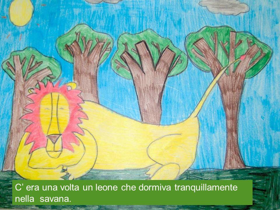 C' era una volta un leone che dormiva tranquillamente nella savana.
