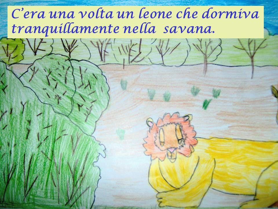 C'era una volta un leone che dormiva tranquillamente nella savana.