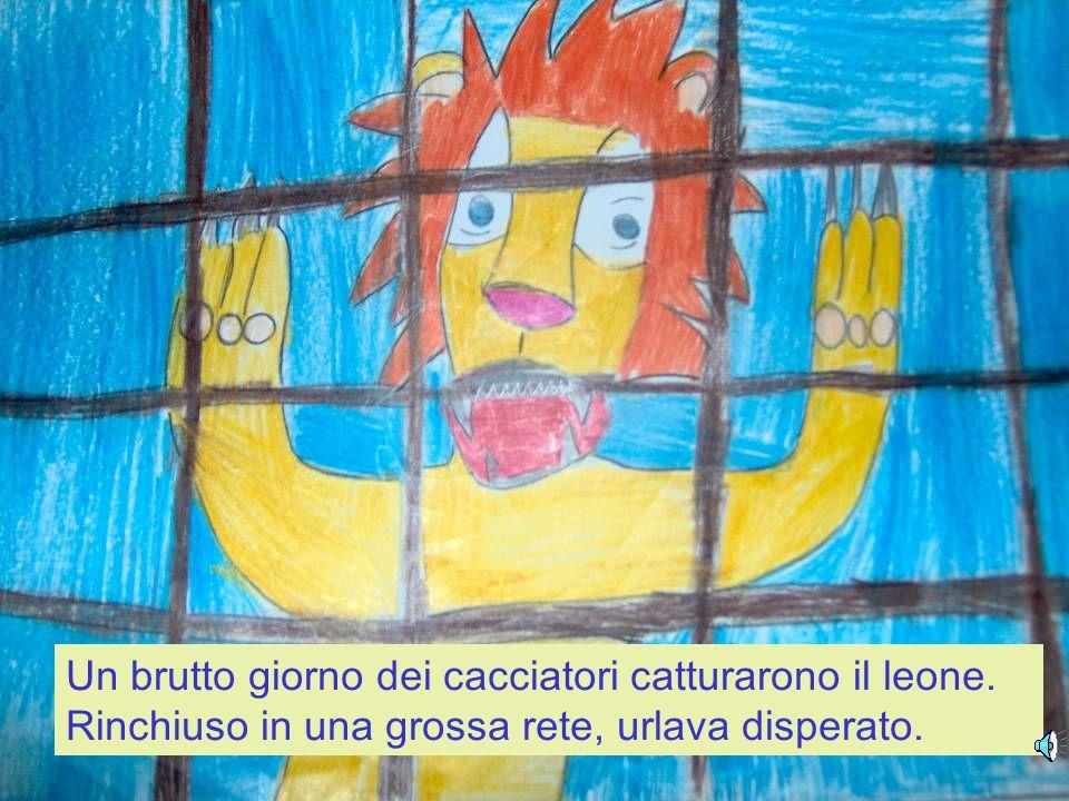 Un brutto giorno dei cacciatori catturarono il leone
