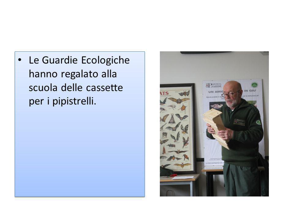 Le Guardie Ecologiche hanno regalato alla scuola delle cassette per i pipistrelli.