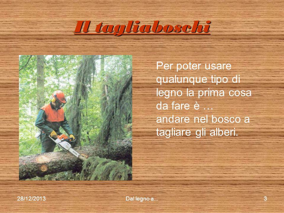 Il tagliaboschi Per poter usare qualunque tipo di legno la prima cosa da fare è … andare nel bosco a tagliare gli alberi.