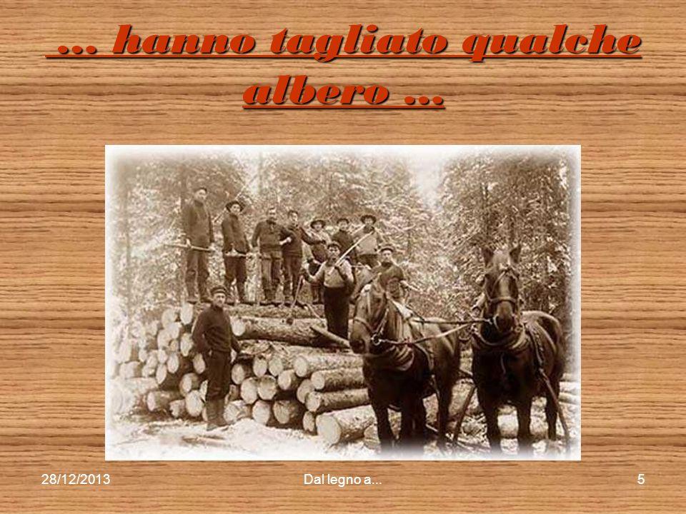 … hanno tagliato qualche albero …
