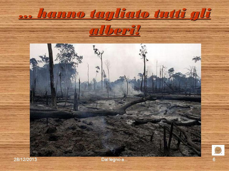 … hanno tagliato tutti gli alberi!