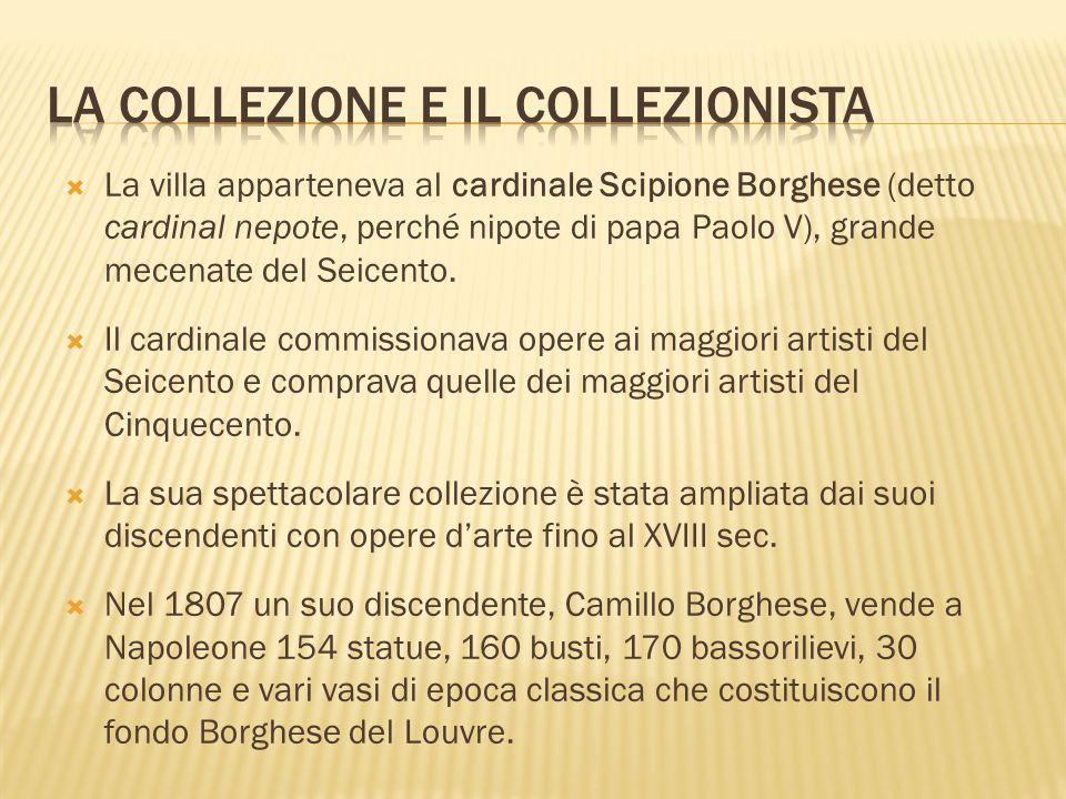 La collezione e il collezionista