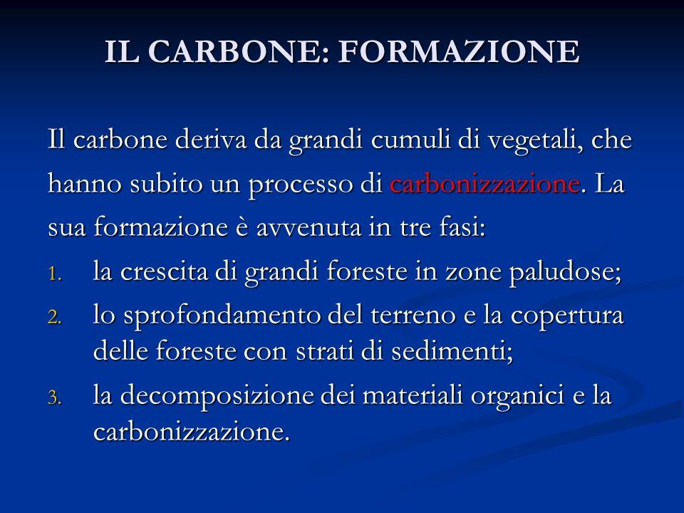 IL CARBONE: FORMAZIONE