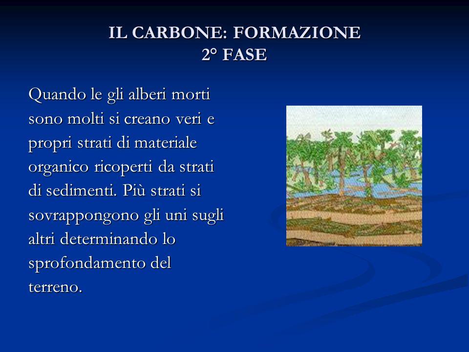 IL CARBONE: FORMAZIONE 2° FASE