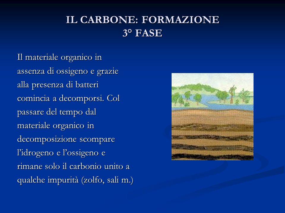 IL CARBONE: FORMAZIONE 3° FASE