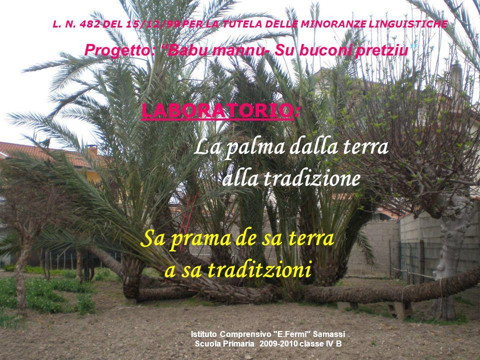 La palma dalla terra alla tradizione