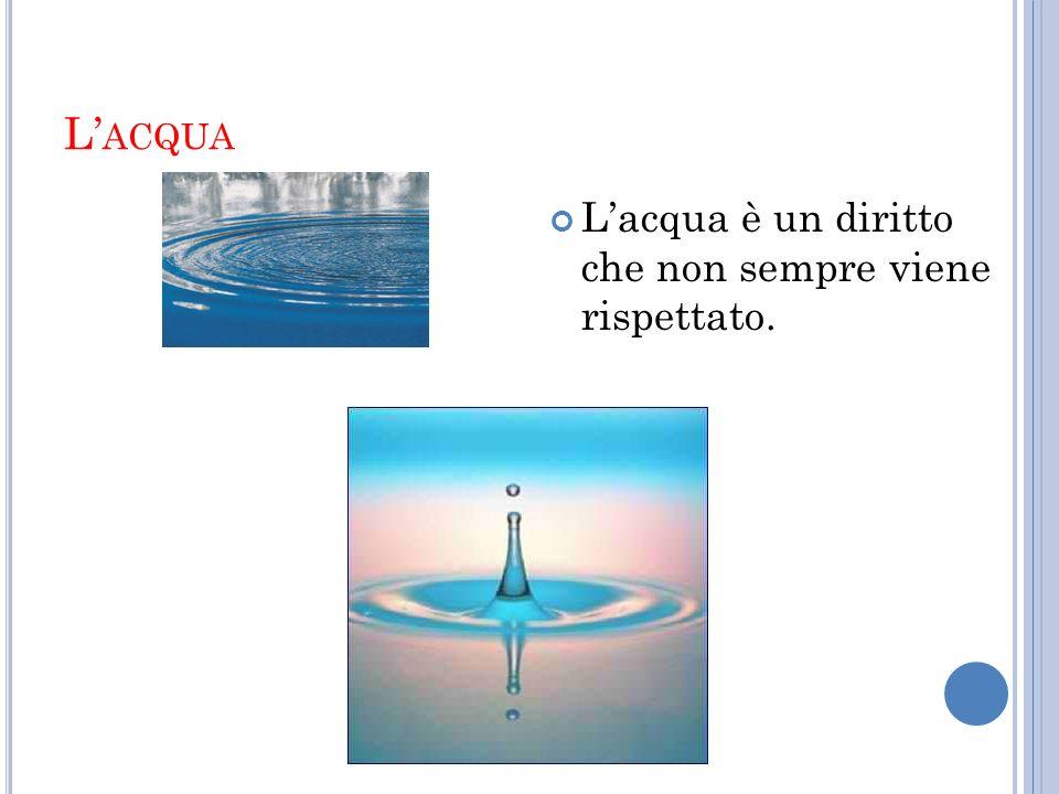 L'acqua L'acqua è un diritto che non sempre viene rispettato.