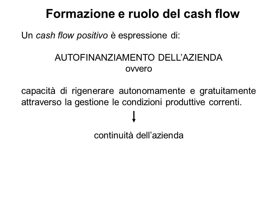 Formazione e ruolo del cash flow