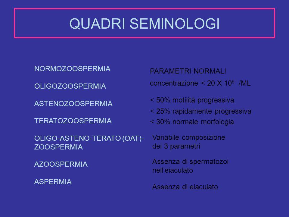 QUADRI SEMINOLOGI NORMOZOOSPERMIA OLIGOZOOSPERMIA ASTENOZOOSPERMIA