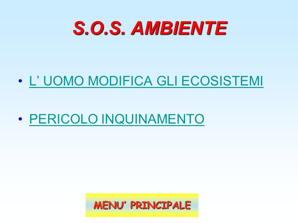 S.O.S. AMBIENTE L' UOMO MODIFICA GLI ECOSISTEMI PERICOLO INQUINAMENTO